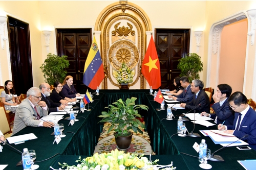 VN, Venezuela organize seventh foreign ministerial-level political consultancy