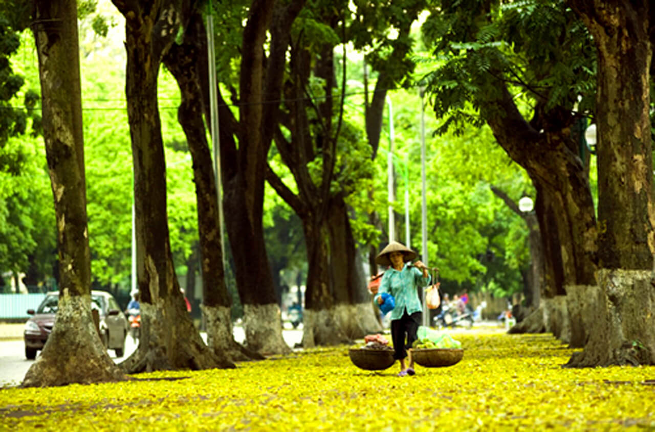 ha noi - best places to visit Vietnam in October
