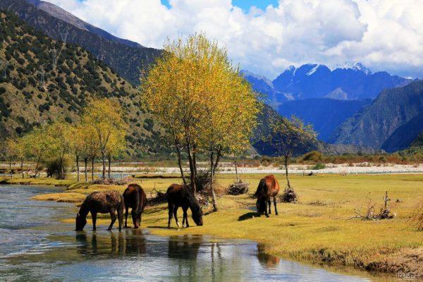 [Khám phá] Tây Tạng hùng vĩ và đầy sắc màu huyền bí